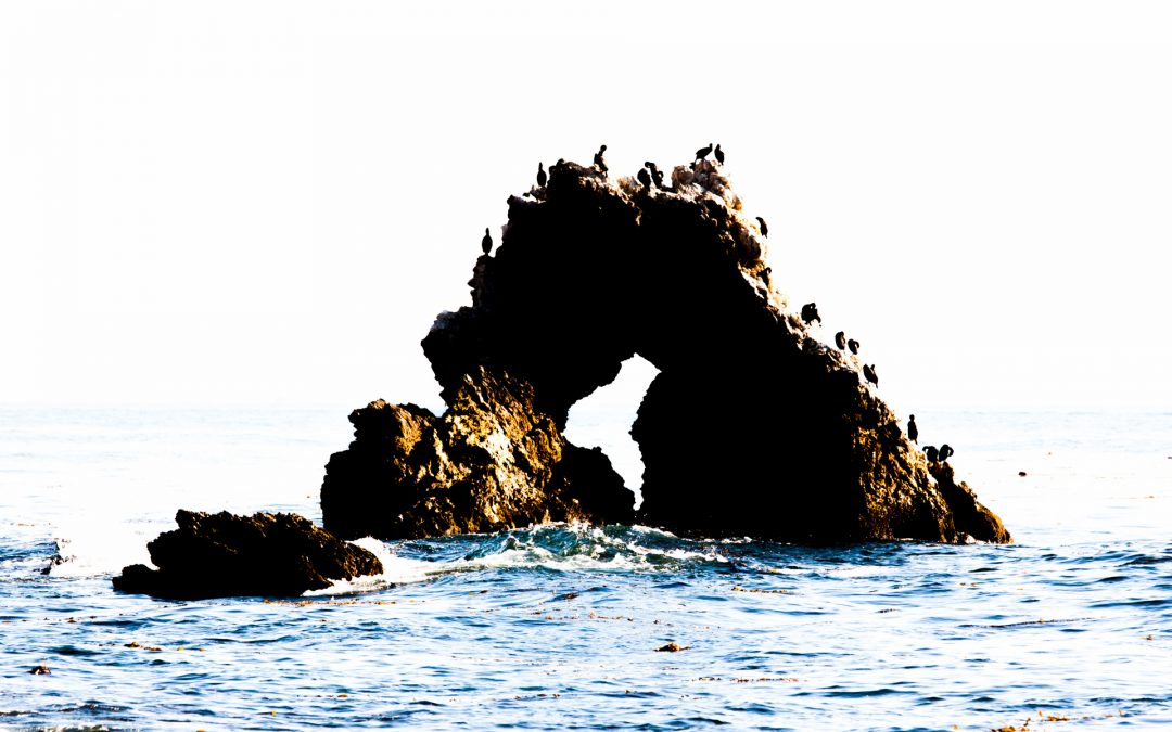 Minimalistic image of seagulls on a rock arch in the ocean.