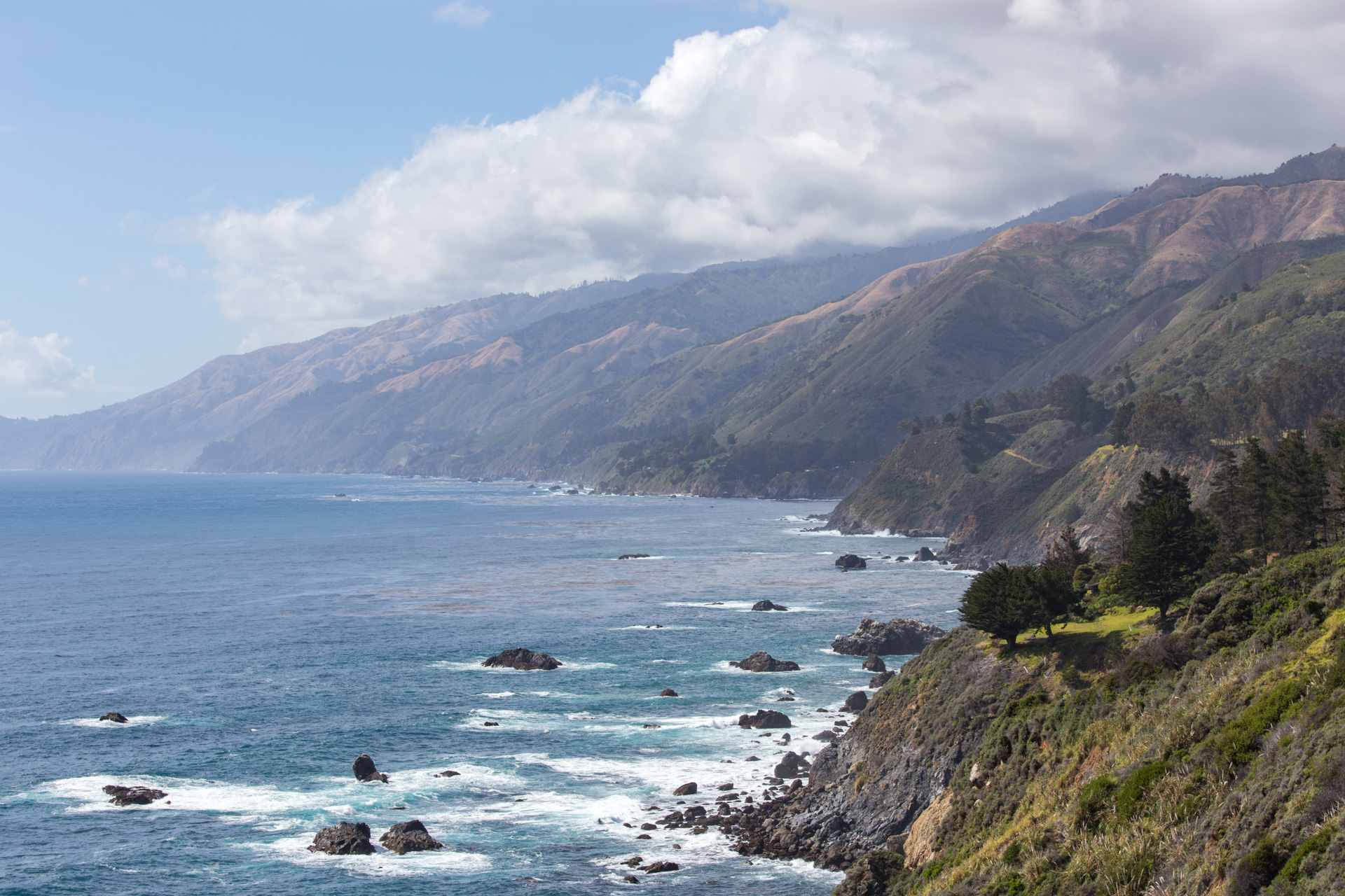 A tree stands atop cliffs overlooking Big Sur, California